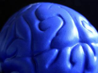 Get ready, get set, go: the US-EU race to conquer the human brain begins!